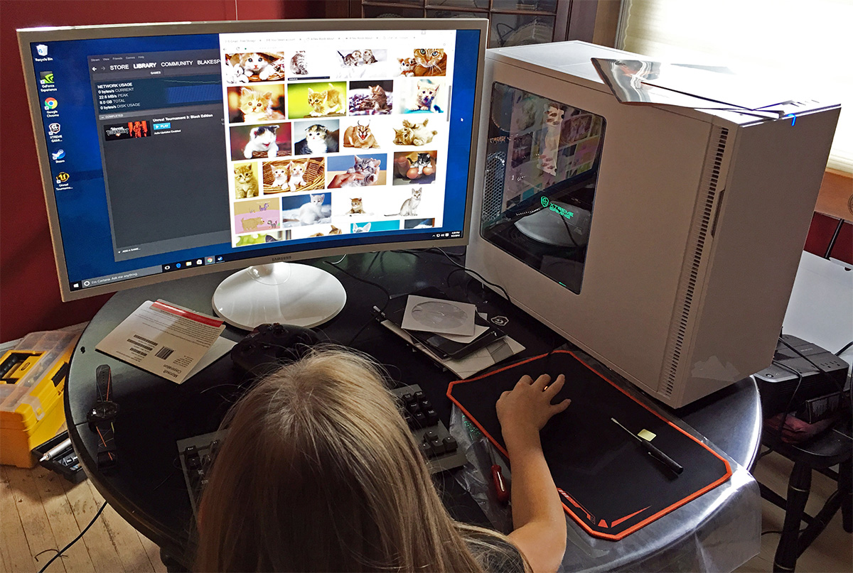 daughter_cats_internet